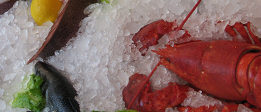 the-lobster-place-10011_535×230.jpg